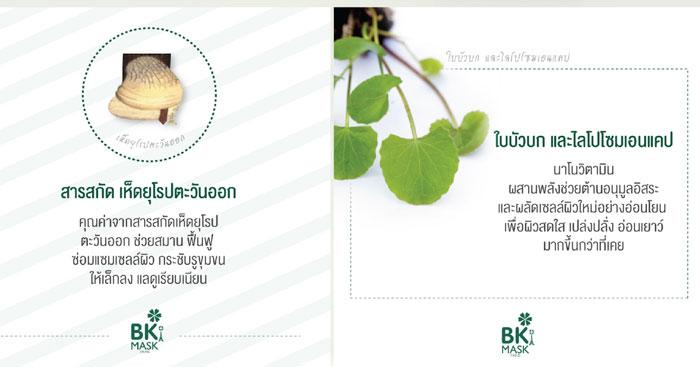 BK-mask3