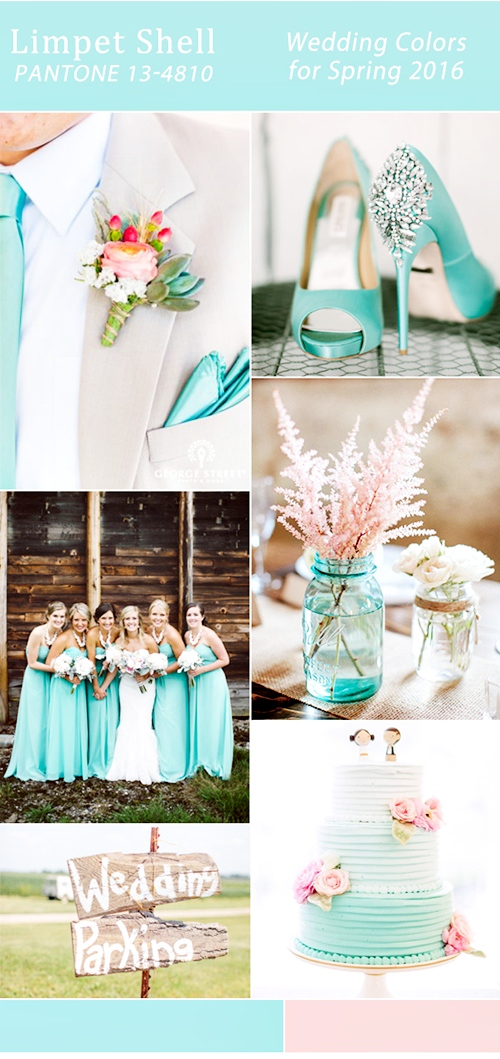pink-and-aqua-limpet-shell-pantone-spring-wedding-color-ideas-2016