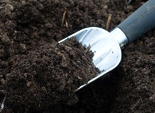 soilsorg